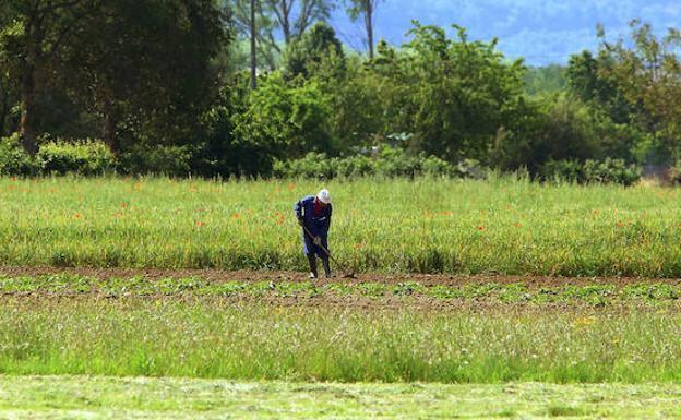 UCCL denuncia que las pensiones del medio rural son un 41,2% más bajas que el resto